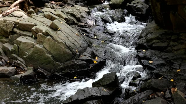 mountain stream in autumn - ruscello video stock e b–roll