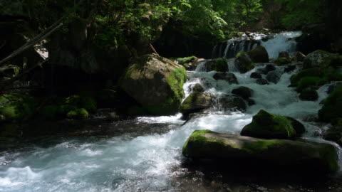 mountain stream in spring - flowing water 個影片檔及 b 捲影像