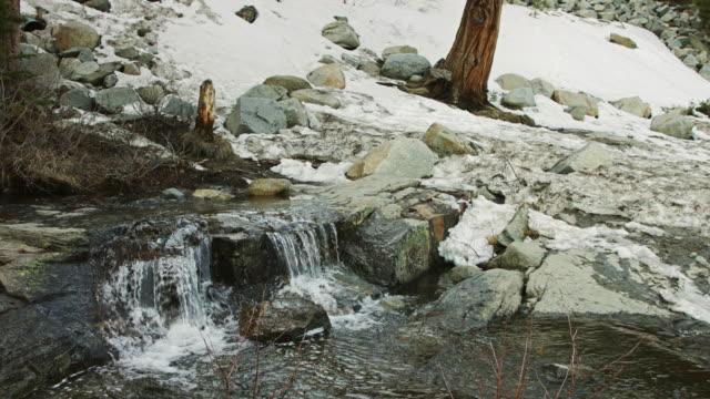 Mountain Stream near Lake Tahoe