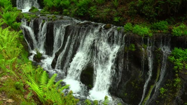 マウンテンストリーム - waterfall点の映像素材/bロール