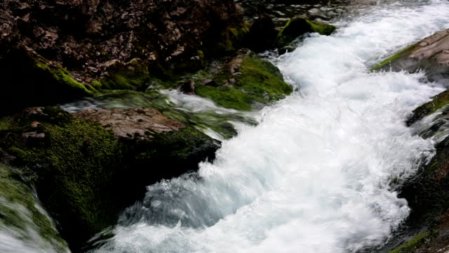 vidéos et rushes de torrent de la montagne - eau vive
