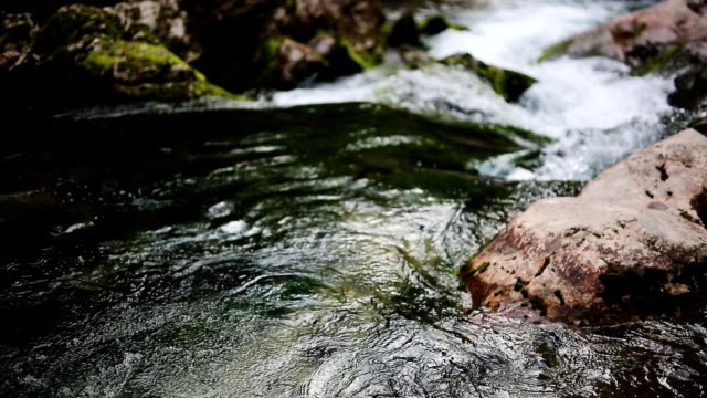 stockvideo's en b-roll-footage met mountain stream - stroom stromend water
