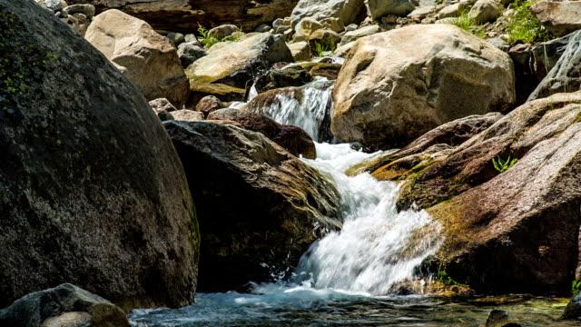 mountain stream - sequoia national park stock videos & royalty-free footage