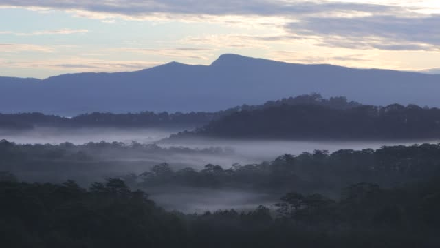 mountain valley in misty morning - tennessee stock videos & royalty-free footage