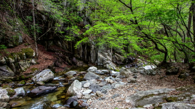 mountain valley in transition from winter to spring / gyeonggi-do, south korea - spring flowing water stock videos & royalty-free footage