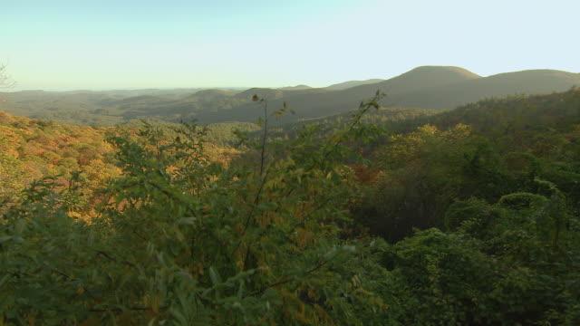 Mountain Vista With Autumn Color