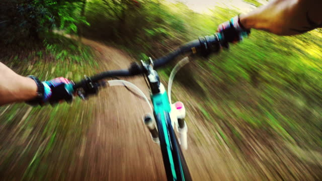 mountainbike in azione: pov rapida corsa nella foresta - strada in terra battuta video stock e b–roll