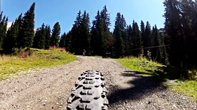 Mountainbike Rear Point of View on the Dolomites