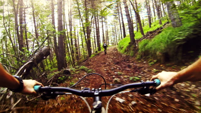 Mountainbike ride in the forest