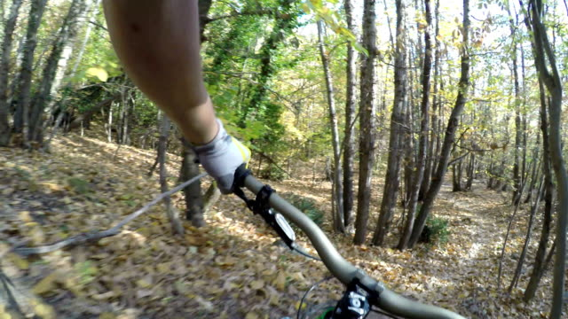 mountain-biker passes companion riding on forest trail - 10 seconds or greater stock videos & royalty-free footage