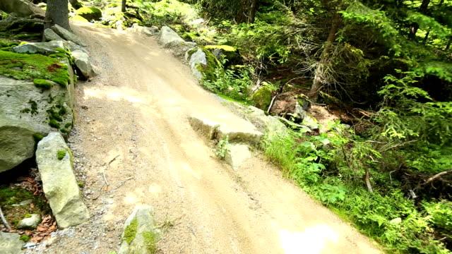 Mountainbiker Riding Downhill