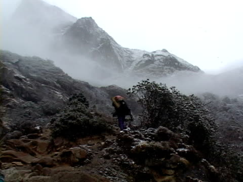 ws, zi, ms, mountaineer crossing mountains in snowy and foggy day, rear view, katmandu, khumbu- himalaya, nepal - khumbu stock videos and b-roll footage