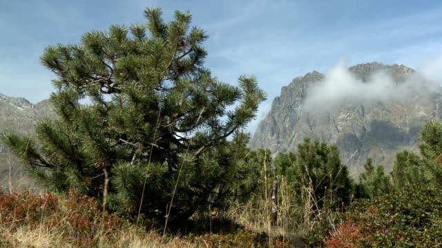 vídeos y material grabado en eventos de stock de mountainous landscape near silvretta, vorarlberg, austria - punto de referencia natural