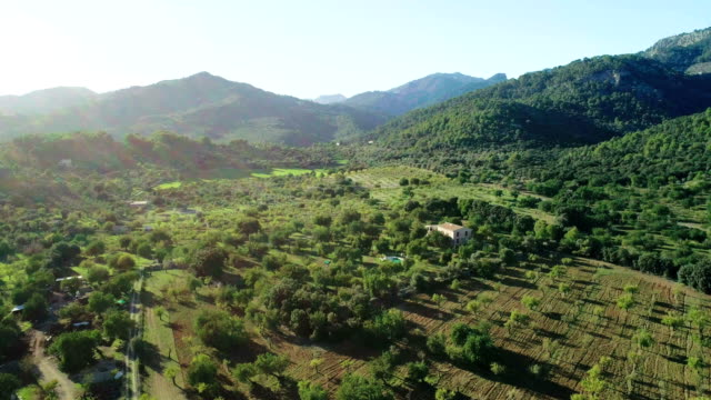 Mountainous landscape with fields and orchards. Aerial view