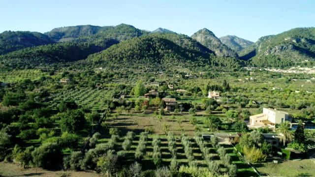 paesaggio montuoso con campi e frutteti. veduta aerea - hill video stock e b–roll