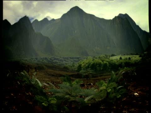 vidéos et rushes de mountains and land merging from green to snow covered scenes (graphics) - évolution de l'espèce