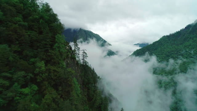 mountains covered in fog in sichuan china - 四川省点の映像素材/bロール