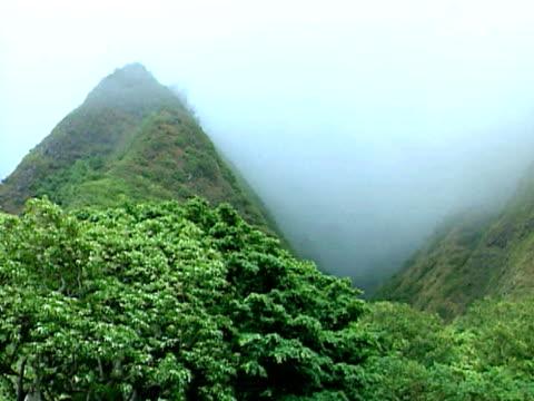 mountains engulfed in fog, maui, hawaii - isole hawaii video stock e b–roll