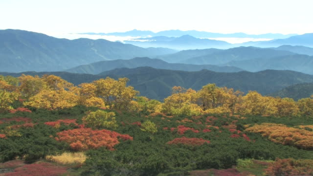 vídeos y material grabado en eventos de stock de mountains in autumn colors - prefectura de fukuoka