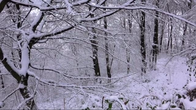 vídeos y material grabado en eventos de stock de mountains of samsun a city of black sea region of turkey are covered with snow during the winter season on 4 january 2015 - glaseado para postres