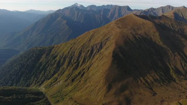 mountains of western caucasus - pinaceae stock videos & royalty-free footage