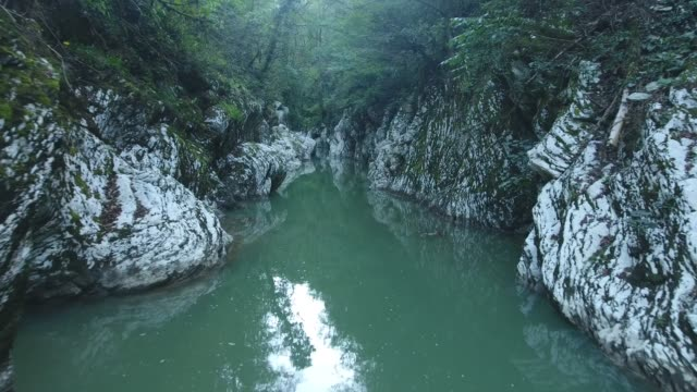 mountains river in canyon (western caucasus) - pinaceae stock videos & royalty-free footage