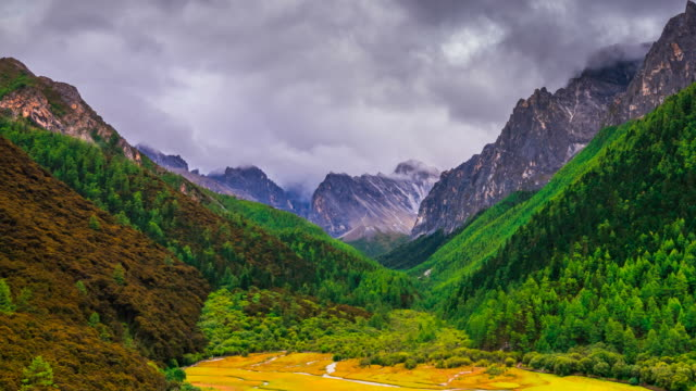 mountains with moving clouds in yanding nature reserve, tibent call this land nyiden, china - redwood forest stock videos and b-roll footage