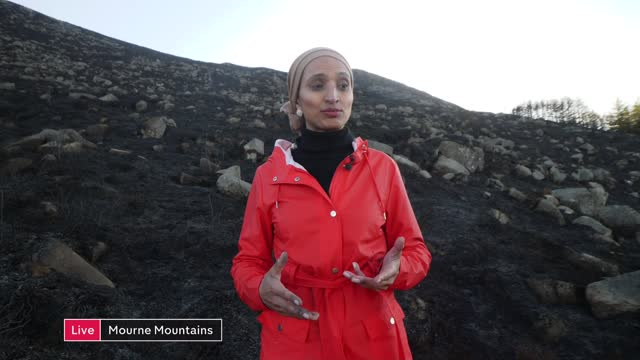 mourne mountains wildfire: significant damage to landscape; northern ireland: county down: mourne mountains: ext live reporter to camera sot - mountain range stock videos & royalty-free footage