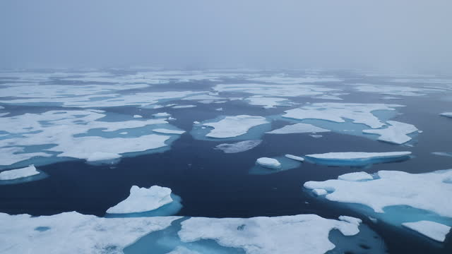 move through melted arctic sea ice floes in summer - clima polare video stock e b–roll