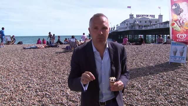 move to tackle aggressive seagull behaviour; west sussex: brighton: reporter to camera sot flock of seagulls in flight over the beach john butler... - seagull stock videos & royalty-free footage