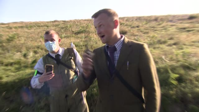 moves in scottish parliament and labour party to regulate grouse shooting north yorkshire uk martin holland interview luke steele interview shooting... - herd stock videos & royalty-free footage