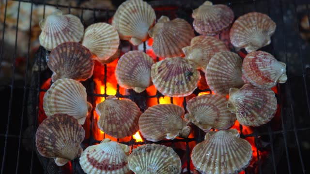 4K movie of Delicious sea shell with spices grilled on fire using traditional kitchen. cooking seafood on a barbecue on an asian night market, Vietnam