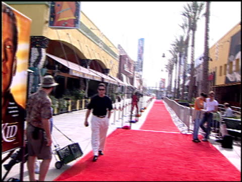 movie poster at the disney's 'the kid' premiere on june 25 2000 - movie poster stock videos & royalty-free footage