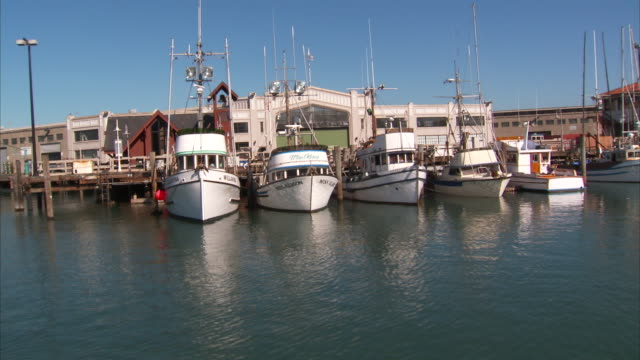 san francisco bay docked watercraft fishing motor boats pier wharf warehouse maritime marine - bucht von san francisco stock-videos und b-roll-filmmaterial