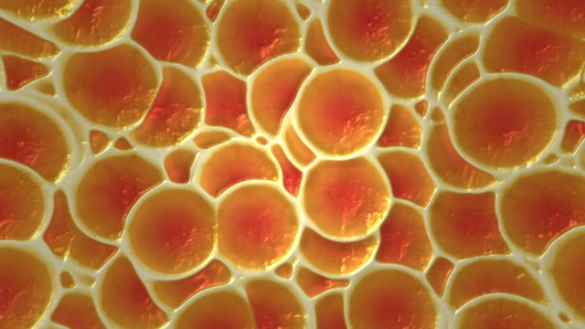 moving cells - alternative therapy stock videos & royalty-free footage