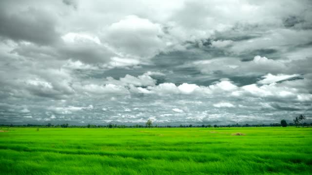ファーム時間経過で暗い雲を移動 - 麦わら帽子点の映像素材/bロール