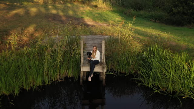 moving forward from high angle view of young woman with dog on dock - west sussex stock videos & royalty-free footage