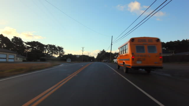 Moving Forward: Small School Bus on the Road