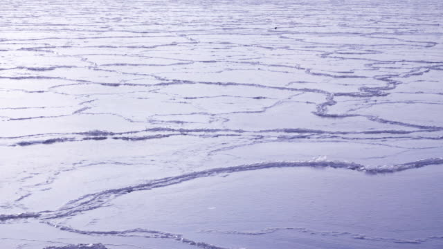 Moving Ice - Ocean