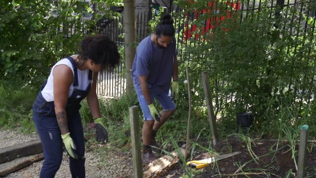 moving logs on farm - community garden stock videos & royalty-free footage