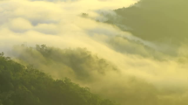 Moving Mist over Mountains at sunrise