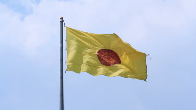 Moving of Buddhist Flag