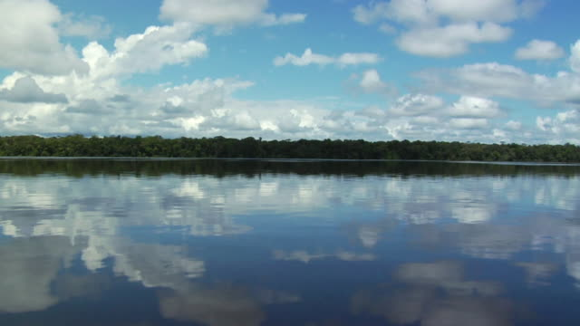 pov moving on river negro reflecting clouds on sky / sao gabriel da cachoeira, amazonas, brazil - cachoeira stock videos and b-roll footage