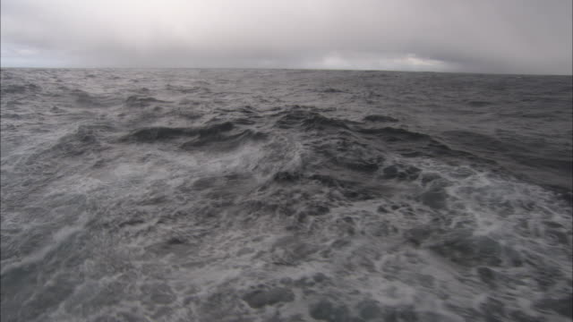 rear pov, moving on rough sea, antarctica - tide stock videos & royalty-free footage