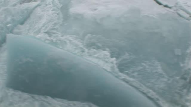 cu moving past broken sea ice/ north pole - 割れ目点の映像素材/bロール