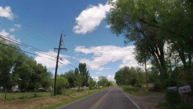moving process plate of a vehicle driving along a treelined road in a rural residential district of a town under a partly cloudy sky - fence stock videos & royalty-free footage