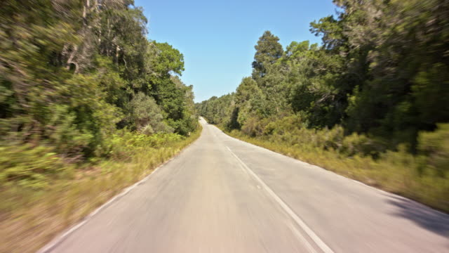moving scenery seen through the front window of a vehicle - drivers POV - part-9 - long straight