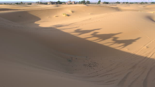 Moving shadows of a Sahara camel caravan reflecting on a sand dune at Erg Chebbi, Saharan Morocco