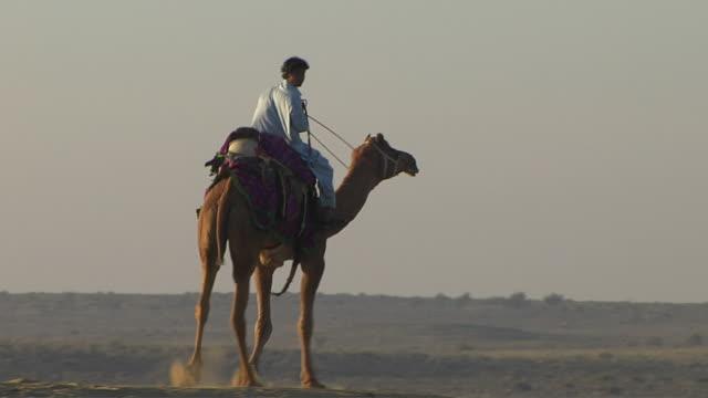 Moving Shot Desert Camel Ride Jodhpur Rajasthan India