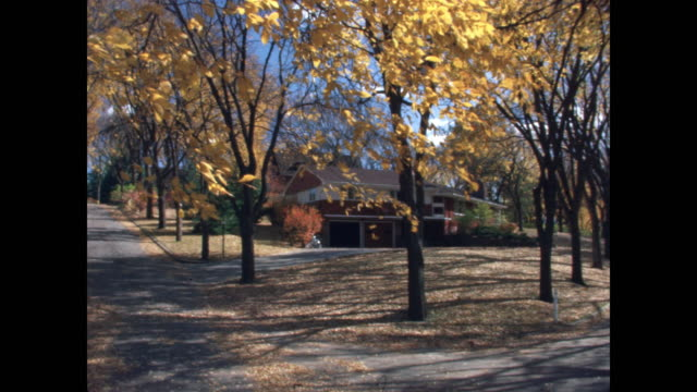 vidéos et rushes de moving shot, leafy suburb, driveways and homes with fall foliage - quartier